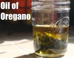 oil-of-oregano-for-healing